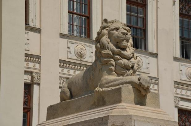 És ahogy minden valamire való városnak, Szegednek is vannak oroszlánjai. Én ezt a szigorúan a távolba tekintőt választottam. Arccal a jövő felé, semmi érzelgősség!