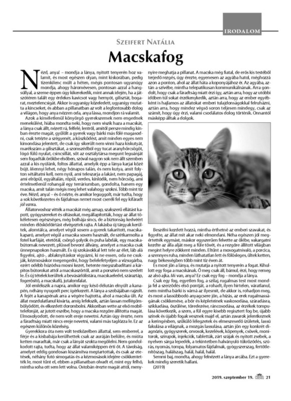 Szeifert Natália: Macskafog